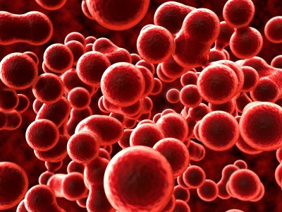 Natural blood thinners for blood clot treatment for Fish oil blood thinner