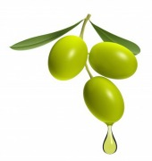 Olive oil among the best for weight control for blood pressure and fat diabetes insulin help