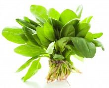 Eat spinach daily for Alzheimers early stage - crucial for later Alzheimers Disease stages!